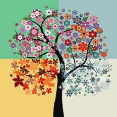 Tree with 4 seasons